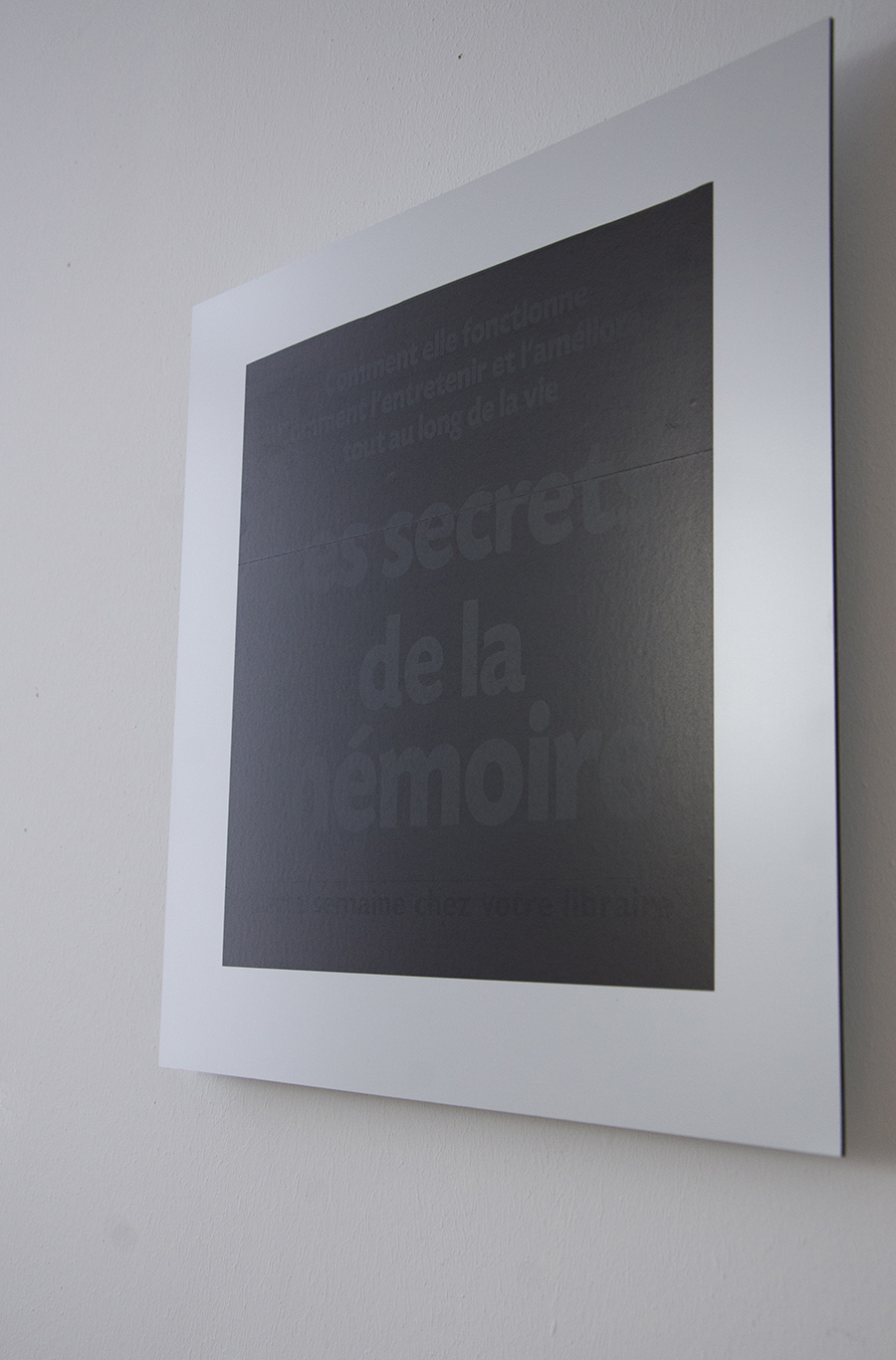 Willem Oorebeek -  Les secrets de la mémoire (2004) - P-screen (2008)